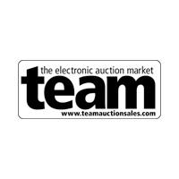 TEAM - The Electronic Auction Market Logo