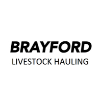 Brayford Logo