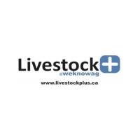 Livestock Media Plus Logo