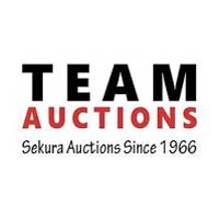 TEAM AUCTION SALES Logo